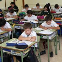 Estudio asistido en primaria en diocesano